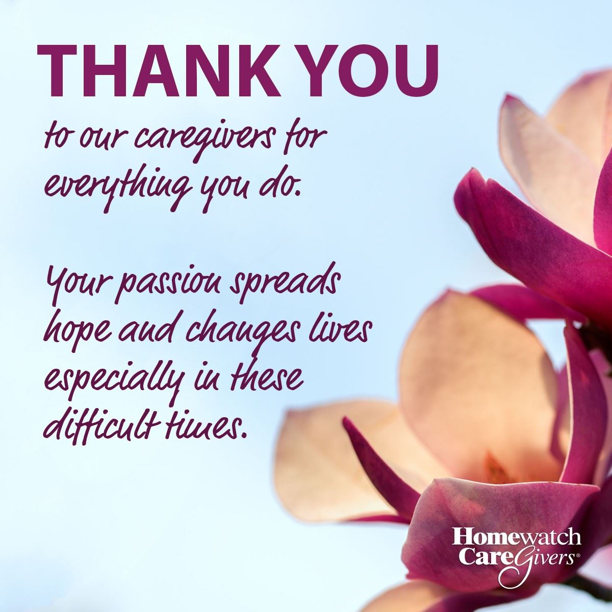 option seven- thank you quote