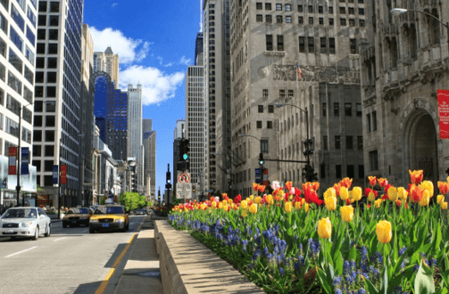 Chicago's Magnificent Mile Holds Top-Rated Caregiving Services
